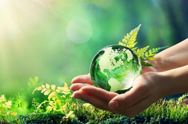 crediti di carbonio carbon neutrality
